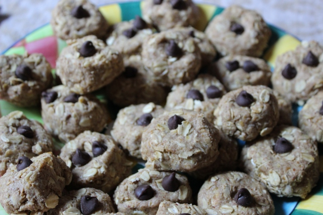 Yummy protein snack balls perfect for parents and kids!