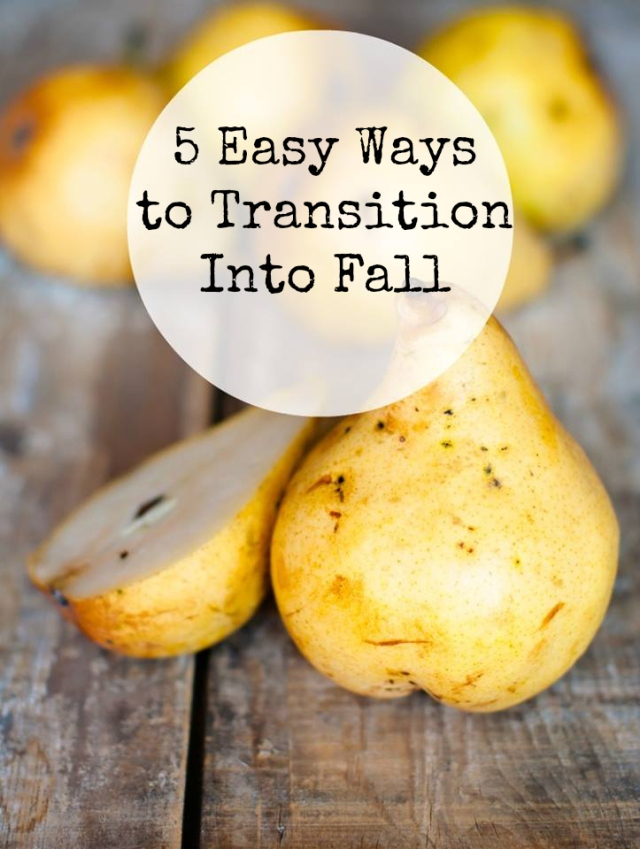 5 ways to transition into fall with Anneka Street